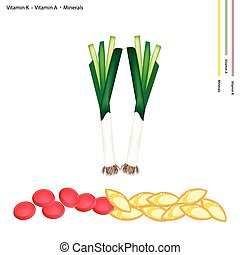 Healthcare Concept, Illustration of Fresh Leek with Vitamin K, Vitamin A and Minerals Tablet, Essential Nutrient for Life.