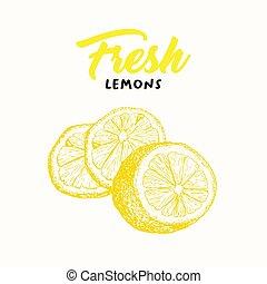 Fresh lemon color vector illustration