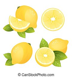 Fresh lemon fruit slice set. Collection of realistic juicy citrus with leaves vector illustration isolated
