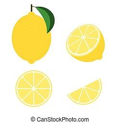 Fresh lemon fruit vector isolated set on white background - Vector illustration