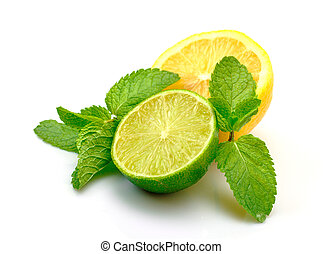 Fresh Lemon, Lime and Mint, isolated on white background