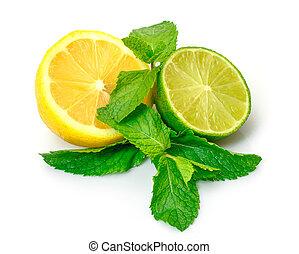 Fresh Lemon, Lime and Mint, isolated on white background