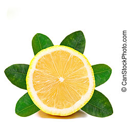 Fresh lemon on White ground