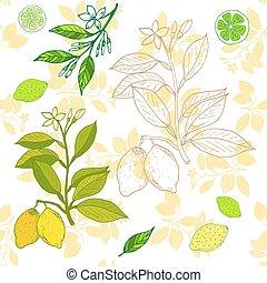 Fresh lemon. Vector illustration for web