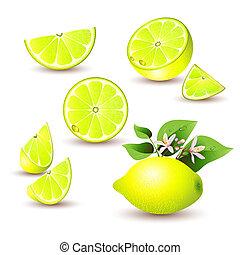 Fresh lemon with flowers, leaves and lemon silice