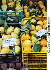 Fresh lemons, oranges and other fruits and vegetables on a...