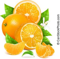 Fresh lemons with leaves and blossom. - Fresh ripe oranges ...