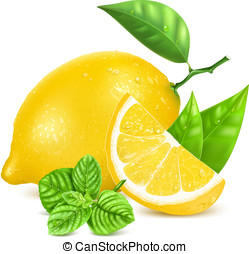 Fresh lemons with leaves and mint. - Fresh lemon with...