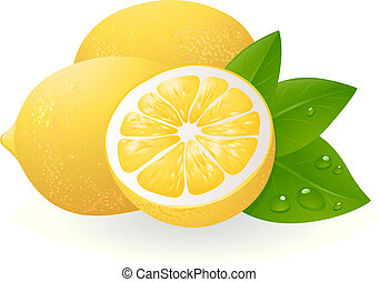Fresh lemons with leaves. Realistic vector illustration