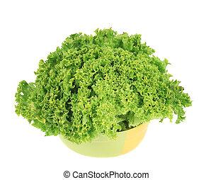 Fresh lettuce in bowl.