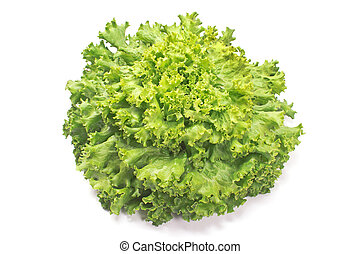 Fresh lettuce isolated on white background