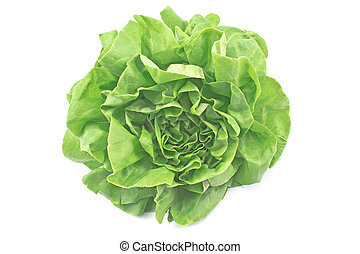 Fresh lettuce isolated on white