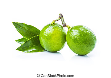fresh lime fruits with leaves on white background