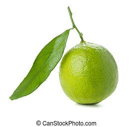 Fresh lime with green leaf