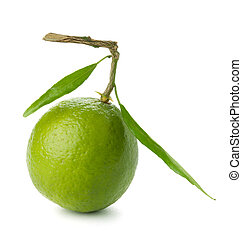 Fresh lime with green leafs