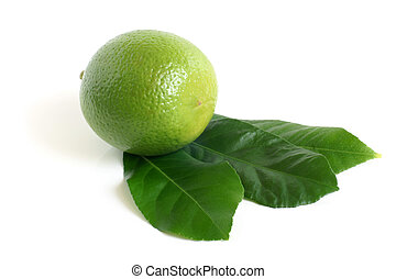 Fresh lime with green leaves