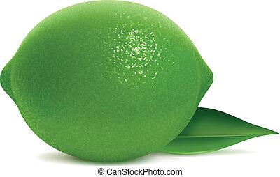 Fresh lime with leaf