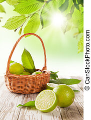 Fresh limes - Fresh harvested limes in basket
