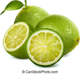 Fresh limes with leaves - Vector illustration of fresh limes...