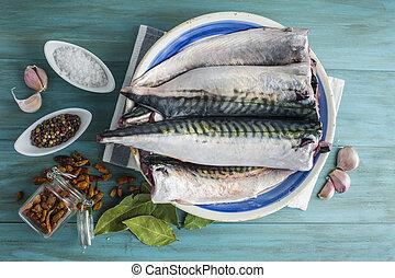 Fresh mackerel to cook