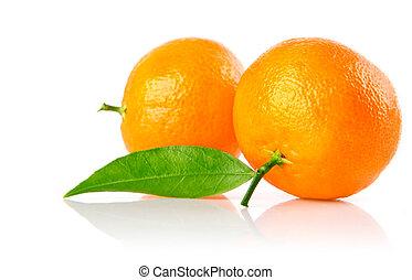 fresh mandarine fruits with green leaves isolated