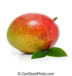 fresh mango fruit with green leafs isolated