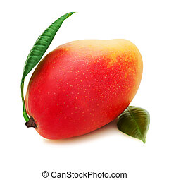 Fresh mango fruit with green leaves isolated on white background.