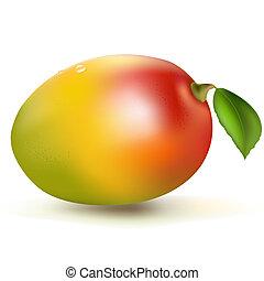 Fresh Mango, Isolated On White Background