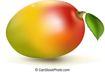 Fresh Mango, Isolated On White Background, Vector...