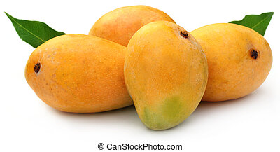 Fresh Mangoes with green leaves over white background