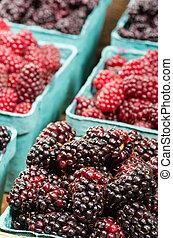 Fresh Marionberries on display