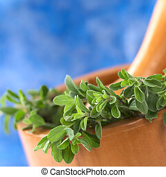 Fresh marjoram in wooden mortar with wooden pestle in the back (Selective Focus, Focus on some leaves in the front)
