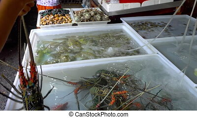 Fresh market Seafood in Thailand - Big lobsters at seafood...