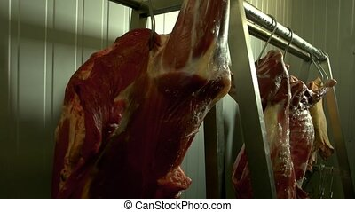 Fresh meat hanging in freezer close up. Raw sheep carcasses...