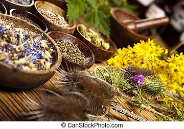 Fresh medicinal herbs on wooden desk