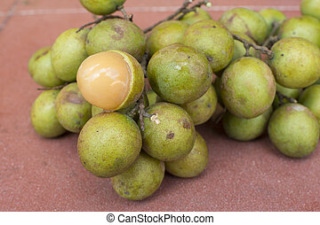 Fresh Melicoccus bijugatus Spanish lime fruit - Closeup...