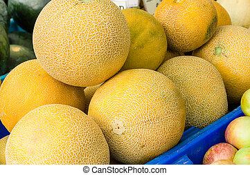 Fresh melons or cantalope at the market
