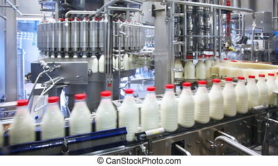 fresh milk poured into bottles, screwed red caps and send to...