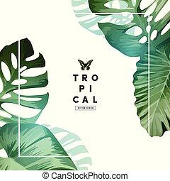 Fresh Minimal Tropical Frame Design