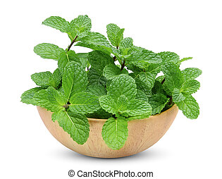 fresh mint leaf in the wooden bowl isolated on white background