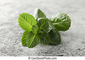 Fresh mint on grey background, close up