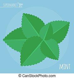 Fresh mint vector icon.