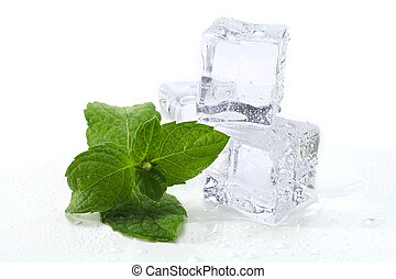 fresh mint with ice cubes