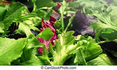 Fresh Mixed Leaf Salad Rotating