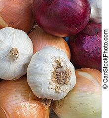 Fresh mixed onions plate