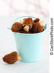 mushrooms in a blue bucket