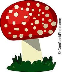 Fresh mushroom, illustration, vector on white background.