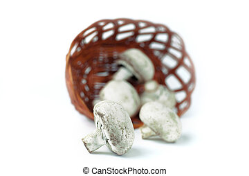 fresh mushrooms in a wicker basket. isolated on white.