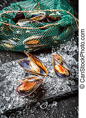 Fresh mussels on crushed ice
