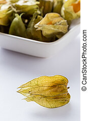 physalis on white table